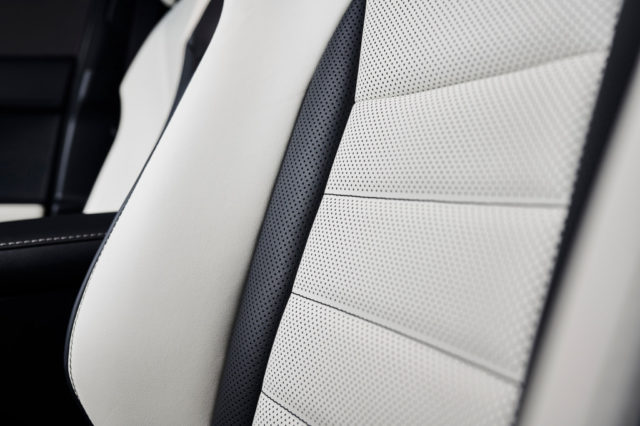 2019 Lexus NX F Sport Black Line Special Edition upholstery